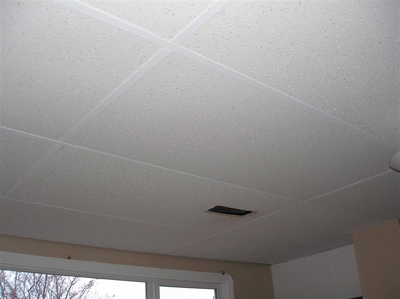 Painting that thing called the suspended ceiling system - Can you wallpaper drop ceiling tiles ...
